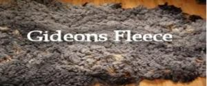 Gideon's Fleece